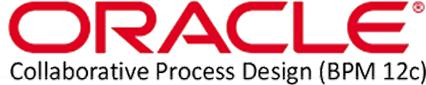 Oracle Business Process Management Suite 12c logo