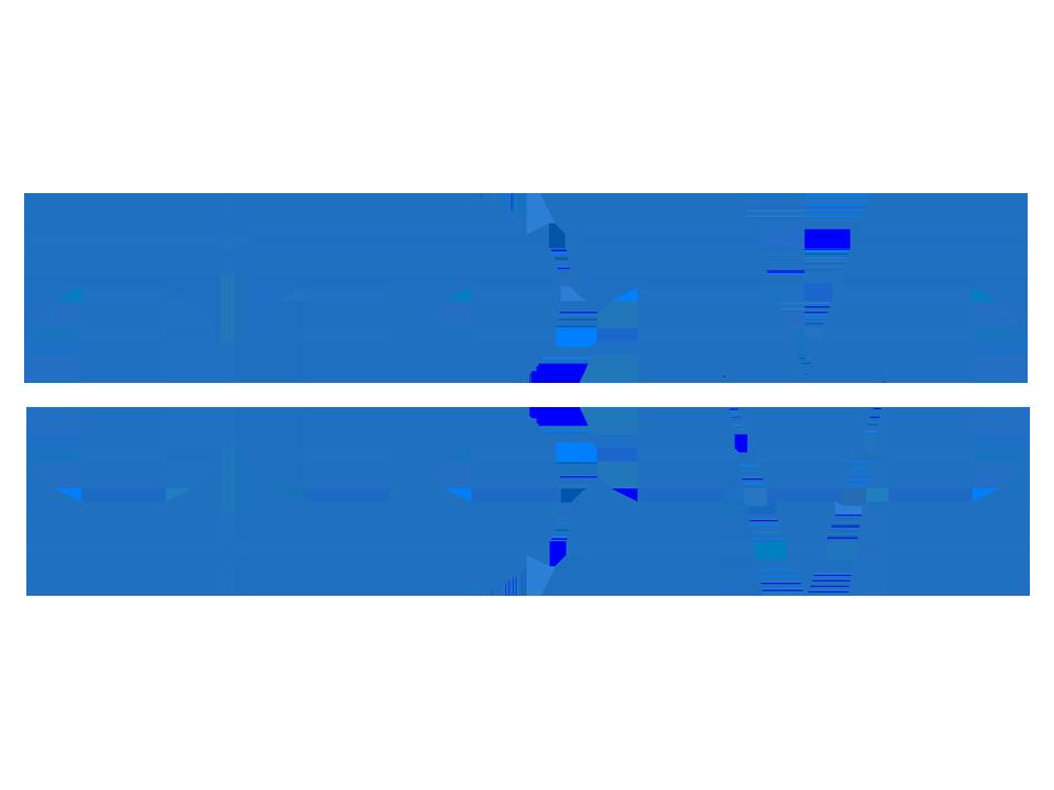 IBM Algorithmics/Risk Management logo