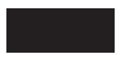 IBM InfoSphere Information Server logo