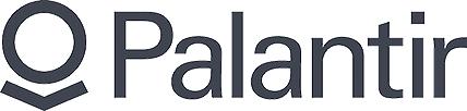 Palantir Big Data logo