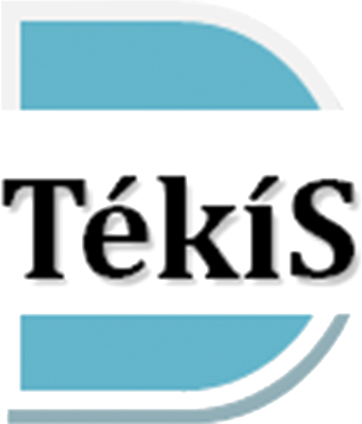 Dream Tekis General Insurance logo