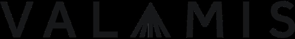 Valamis Learning Experience Platform logo