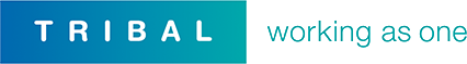 SITS:Vision logo